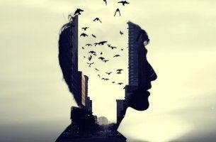 pájaros saliendo de la cabeza abierta de un hombre