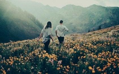 pareja caminando por campo de flores
