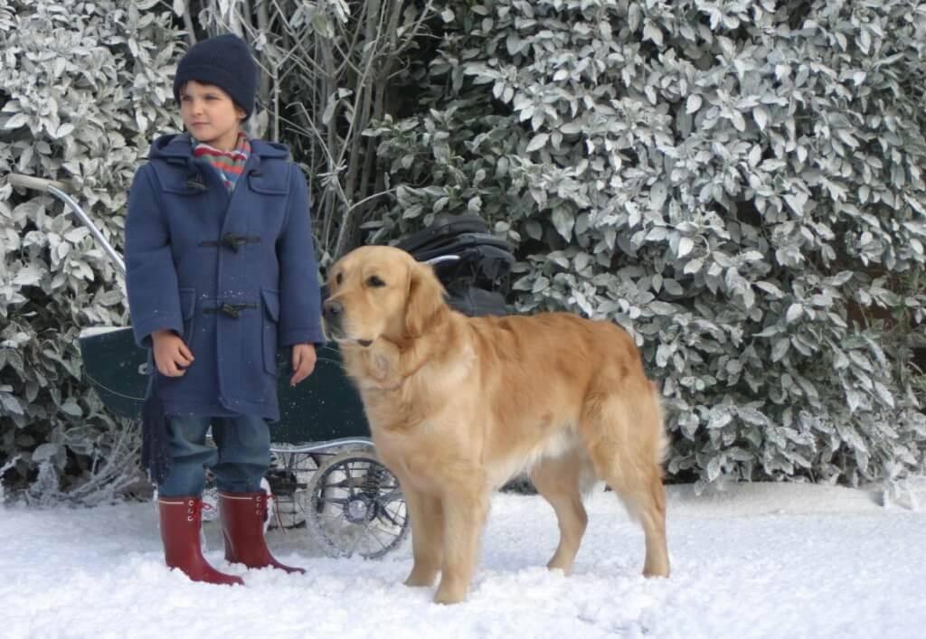 Película sobre el autismo de un niño y su perro