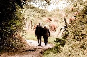 Abuelos andando por un camino agarrados