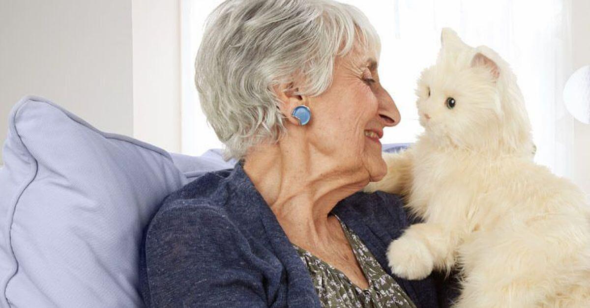Anciana haciendo gatoterapia