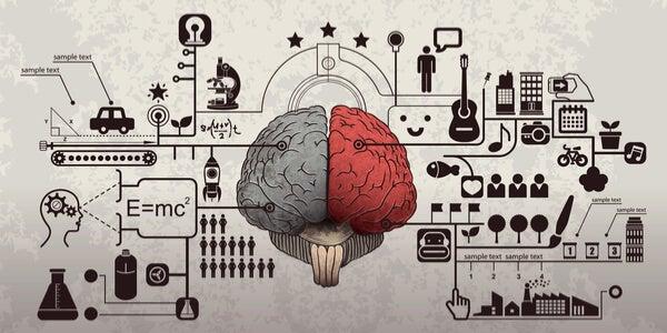 Aspectos del cerebro