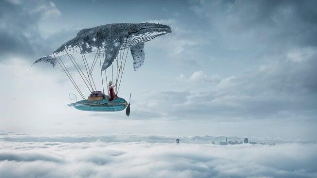 ballena representando la magia de los microrrelatos para imaginar y soñar