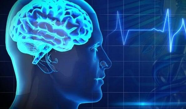 Los 5 mayores enemigos de la salud cerebral