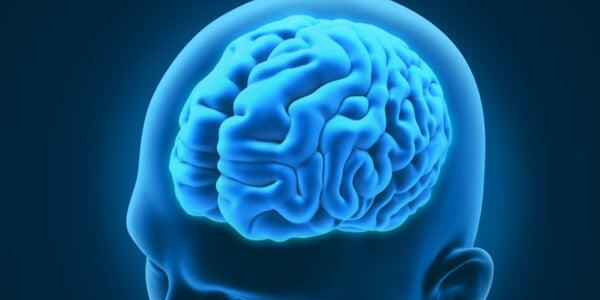 Cerebro de un hombre para representar los trastornos neurológicos