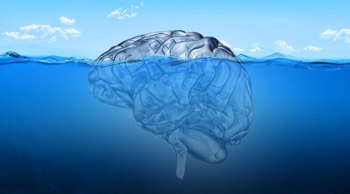 cerebro sumergido representando la terapia Junguiana