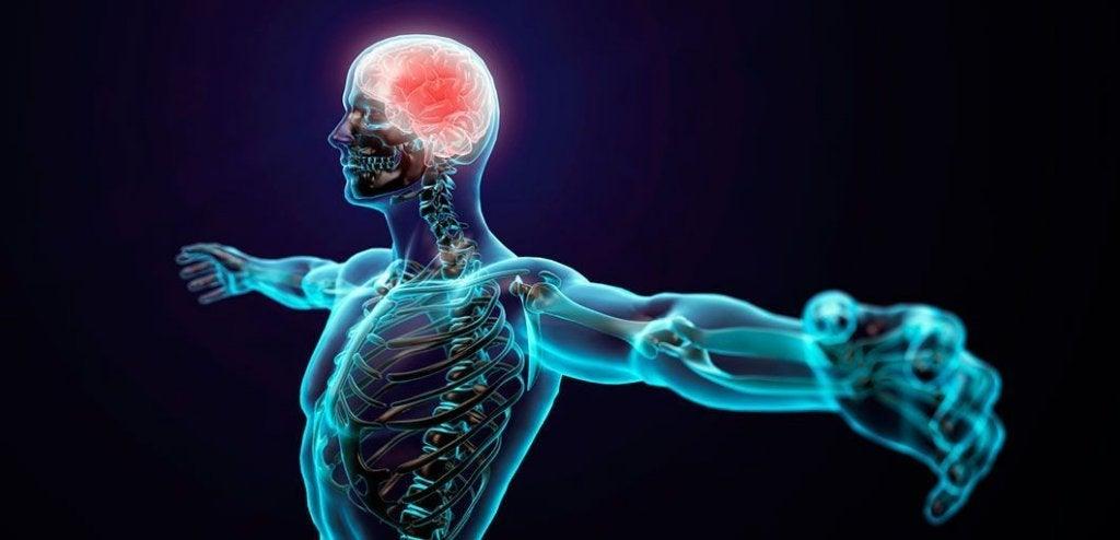 figura humana representando la psicología deportiva