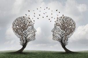 Dos árboles con formas de cabezas de personas para representar la cognición social
