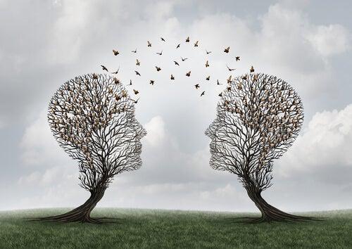 ¿Qué es la cognición social?