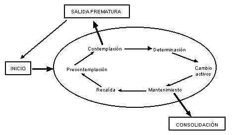 Etapas del modelo transteórico del cambio
