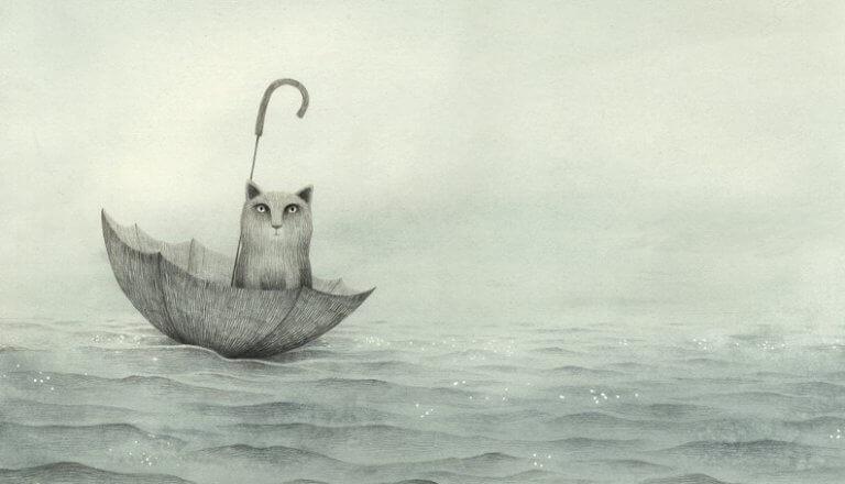 Gato sobre paraguas