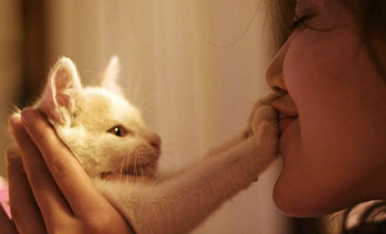 Mujer con su gato blanco tapándole la boca