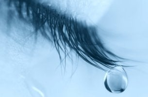 Ojo con lágrima