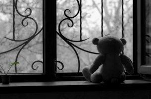 Osito mirando por la ventana