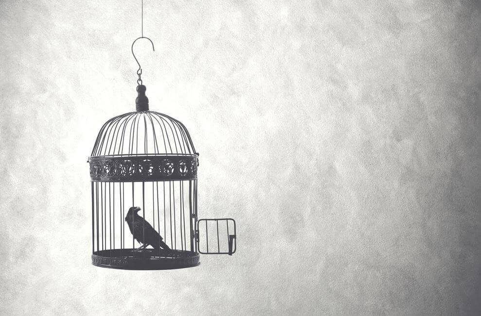 Pájaro en una jaula abierta como prueba para demostrar valentía