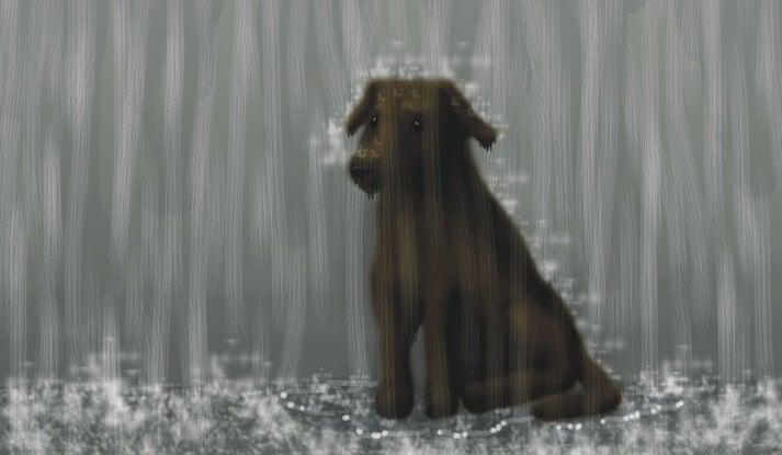 imagen representando la historia del perrito curioso