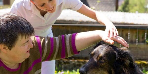 Perro con terapeuta y paciente