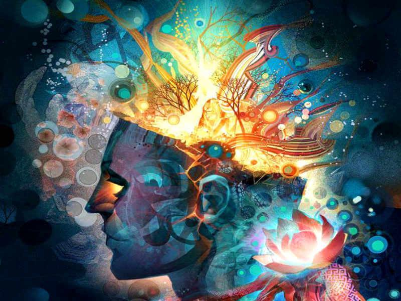 rostro que se abre en colores representando los tipos de mentes