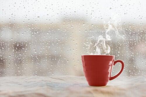 Taza de café en la ventana representando los síntomas ocultos de la tristeza