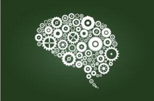 Cerebro dibujado en una pizarra