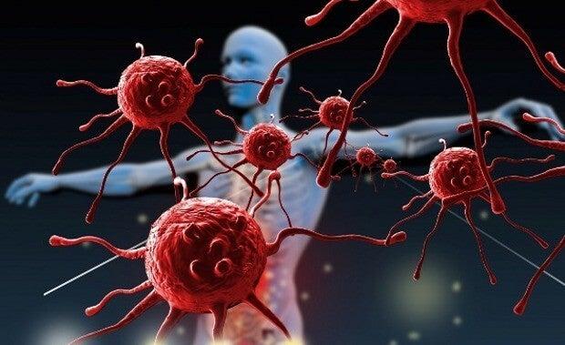 ¿Cómo puedes fortalecer tu sistema inmunológico?