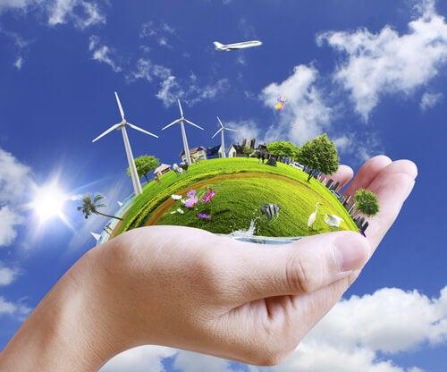 Mano sujetando parte de la naturaleza para representar la psicología ambiental