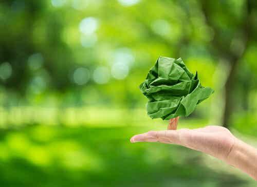 ¿Qué es la psicología ambiental?