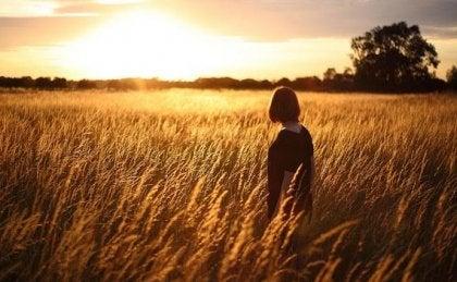 Mujer en un campo de trigo viendo el atardecer