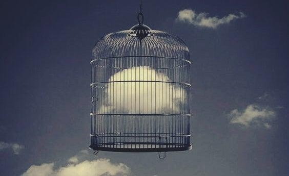 Nube en una jaula