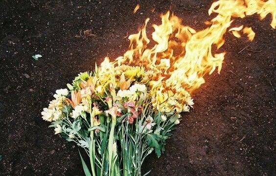 ramo de flores en llamas representando la ira
