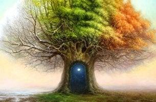 Árbol con una puerta en su tronco