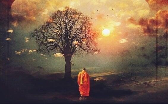 monje ante árbol pensando en acabar con el sufrimiento