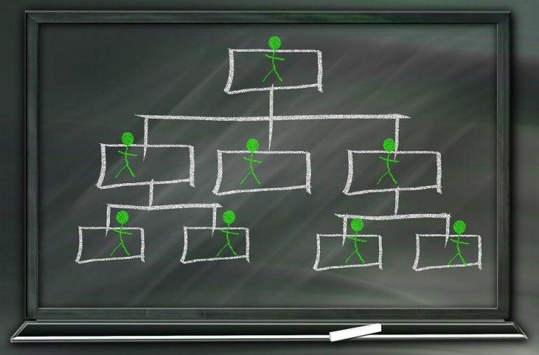 La dominancia social: la preferencia por un mundo jerarquizado