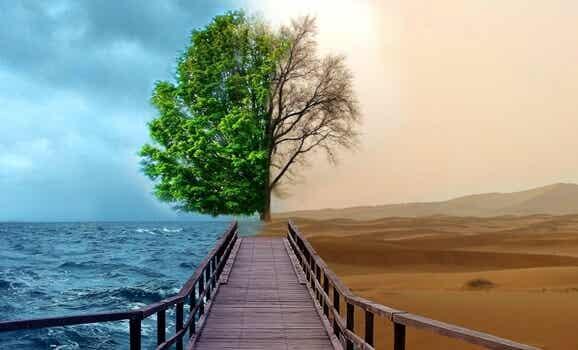 4 claves de la terapia Gestalt para tratar la depresión