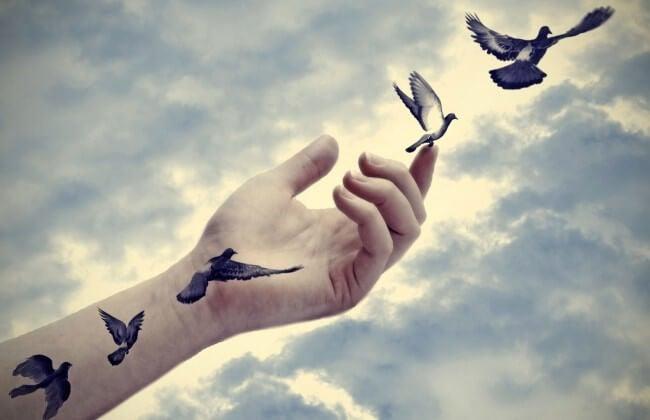 팔에서 날아 다니는 새들