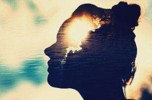 perfil femenino representando las mentes magnéticas