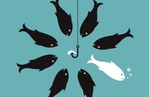 pez blanco escapando de peces negros al aprender a discrepar