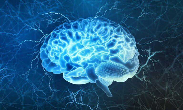 Cerebro iluminado al escuchar música relajante
