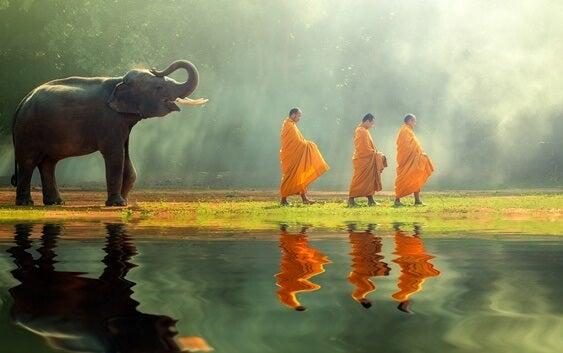 elefante siguiendo a monjes representando el acto de acabar con el sufrimiento