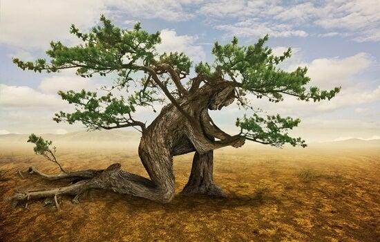 hombre árbol arrodillado pensando que todo es muy difícil