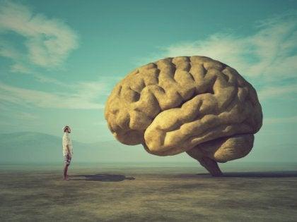 Hombre frente a un cerebro simbolizando el test de Asociación de palabras de Jung
