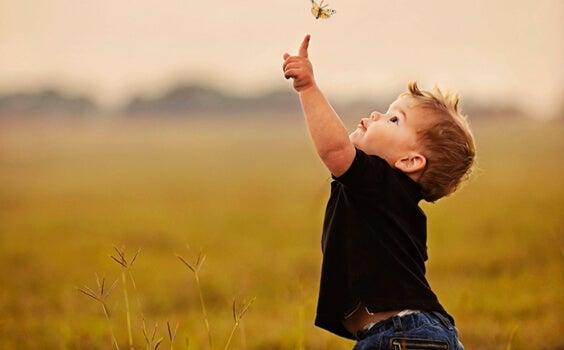 Niño tocando una mariposa