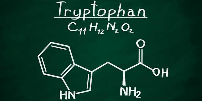 fórmula del triptófano y la serotonina