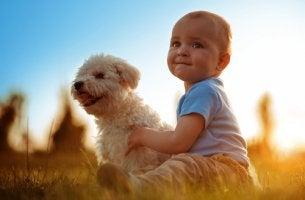 Bebé con perro para representar el vínculo entre animales y bebés