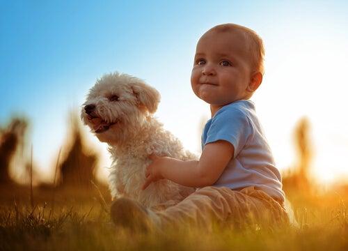 Bebé con perro para representar que el mundo necesita más compasión