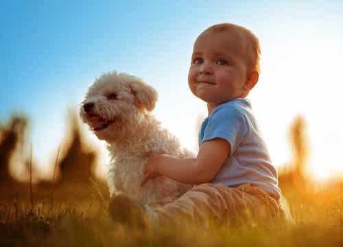 Animales y bebés: las ventajas de crecer juntos
