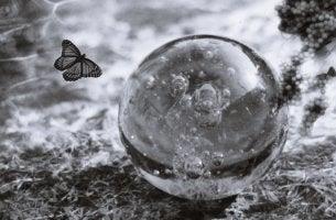 Bola de cristal con mariposa representando la fragilidad emocional