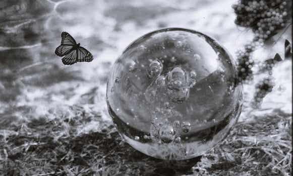 """Fragilidad emocional: claves para comprender y fortalecer el """"yo"""""""
