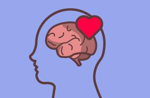 Cerebro con un corazón para representar la teoría de la valoración emocional de Magda B. Arnold