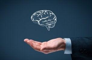 mano sosteniendo cerebro representand la simplicidad inteligente